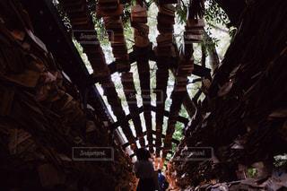 木の隣に立っている人のグループの写真・画像素材[1281911]