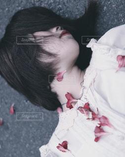 眠り姫の写真・画像素材[1657117]