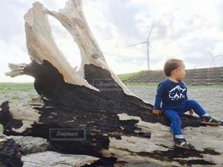 流木の上にいる子供の写真・画像素材[1278293]