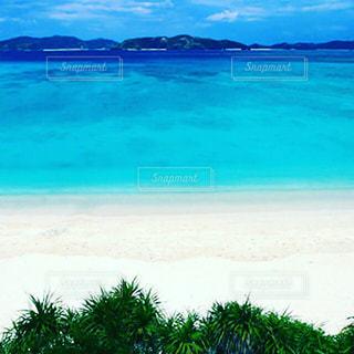 海の写真・画像素材[611297]