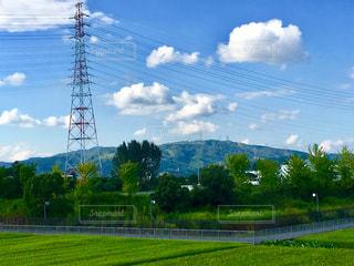背景の木と大規模なグリーン フィールドの写真・画像素材[750155]
