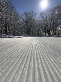 雪の写真・画像素材[614049]