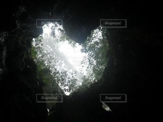 屋久島の写真・画像素材[613399]