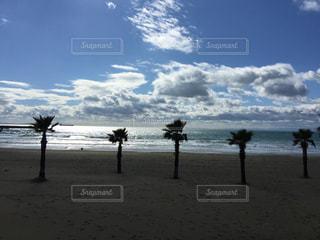 海の写真・画像素材[613601]