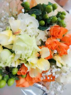花の写真・画像素材[620316]