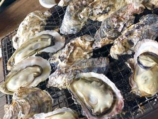 焼き牡蠣食べ放題!の写真・画像素材[1842243]