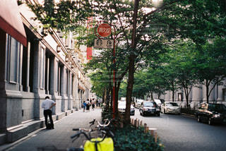 街の木が並ぶの写真・画像素材[754269]