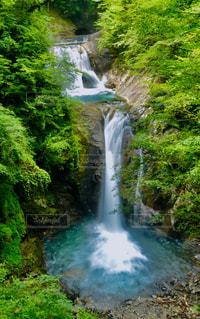 西沢渓谷の写真・画像素材[759397]