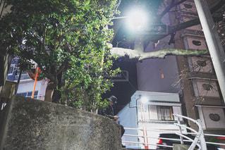 夜道でちょっと休憩の写真・画像素材[2960941]
