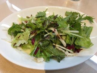 野菜 - No.651474