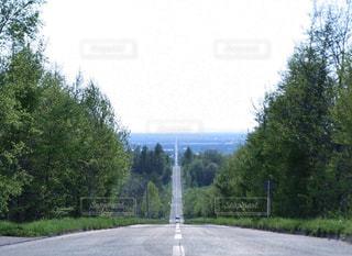 天に続く道の写真・画像素材[1275002]