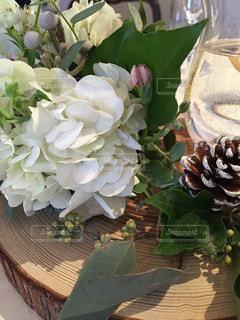 花の写真・画像素材[616773]