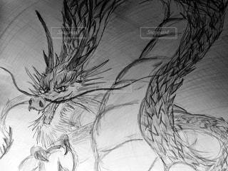 龍の写真・画像素材[618595]