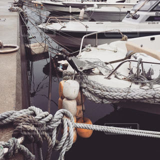 漁港の写真・画像素材[734158]
