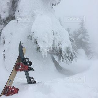 雪山とスノーボードの写真・画像素材[736111]