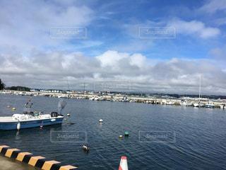 漁港の写真・画像素材[736115]