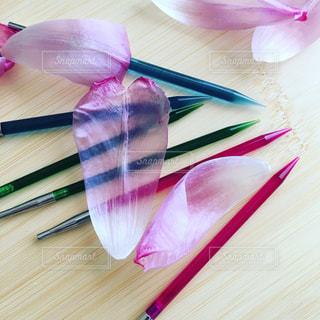 透明な編み針と花びらの写真・画像素材[983291]