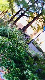 台風の写真・画像素材[1503832]