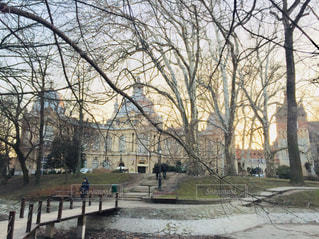ハンガリー ブダペスト。夕暮れ時の公園。の写真・画像素材[2225055]