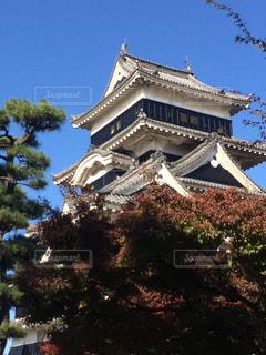 松本城の写真・画像素材[652412]