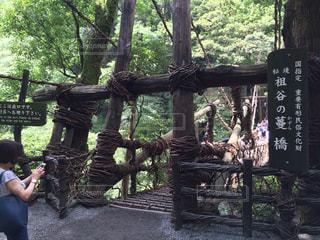 徳島県の写真・画像素材[652721]