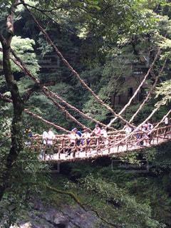 徳島県の写真・画像素材[652724]
