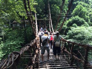 徳島県の写真・画像素材[652751]