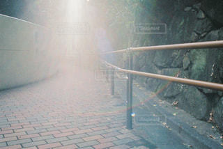 公園のフレア写真の写真・画像素材[1658549]