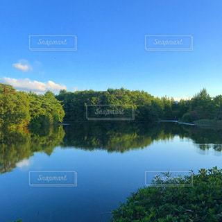 木々 に囲まれた水の体の写真・画像素材[795320]