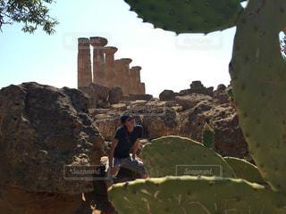 イタリア シチリア エンペードクレ 風景 植物の写真・画像素材[621825]
