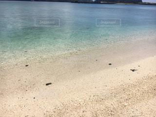 海の写真・画像素材[697949]