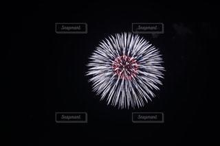 花火の写真・画像素材[1413397]