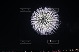 花火の写真・画像素材[1413399]