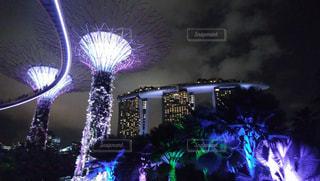 シンガポールの写真・画像素材[623001]