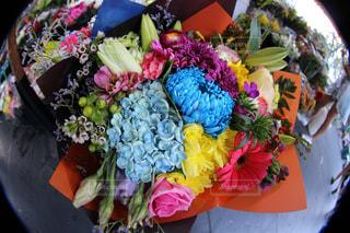花の写真・画像素材[622997]