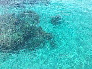 海の写真・画像素材[646653]