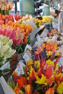 花の写真・画像素材[623706]