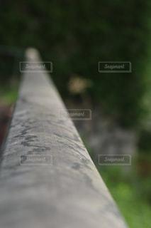 自然の写真・画像素材[623662]