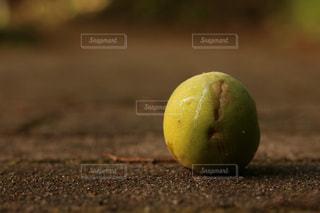 自然の写真・画像素材[626099]