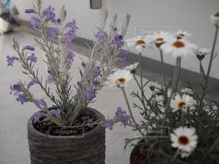 テーブルの上に花瓶の花の花束の写真・画像素材[1106158]