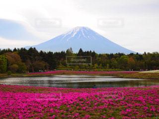 背景の山と富士山の写真・画像素材[1194449]