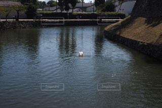水域に架かる橋の写真・画像素材[2513010]