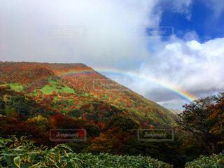 背景の山と木 - No.967300