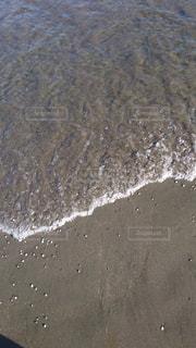 海の写真・画像素材[625615]