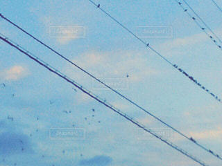 空 - No.176859