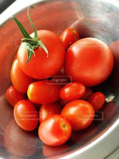 野菜の写真・画像素材[631827]