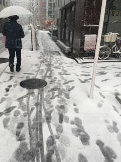 東京の雪 - No.988499