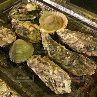 牡蠣 - No.627351