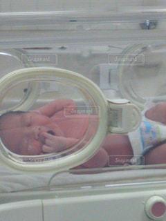 赤ちゃんの手の写真・画像素材[823131]