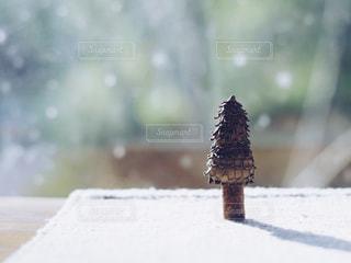 風景の写真・画像素材[273239]